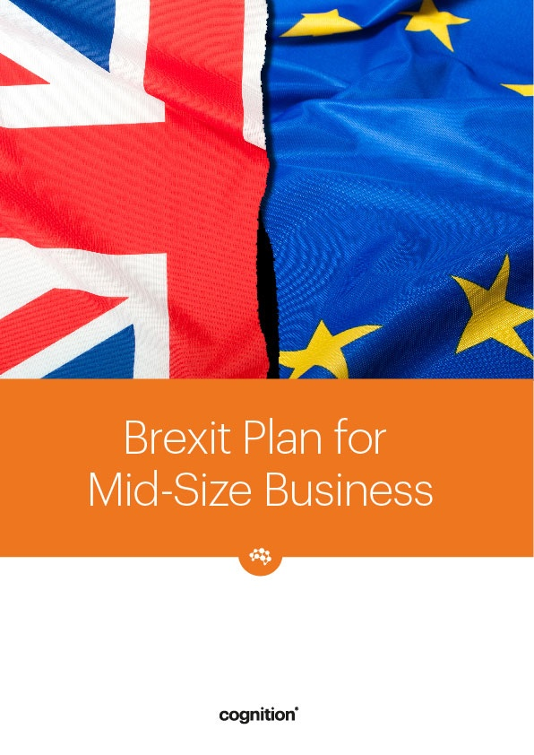 Brexit Plan for Mid-Size Business