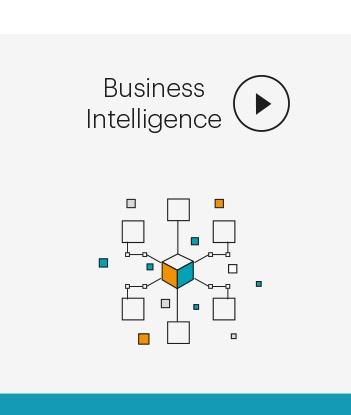 Business Intelligence from Cognition Integrated Marketing Agency